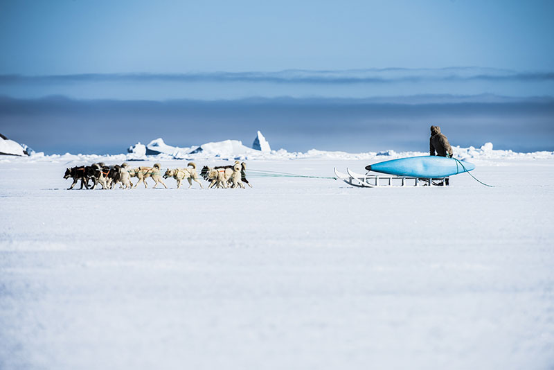 Local sled dog guide Gideon sets out on another adventure to find polar bears and seals. Photo: Mike Artz